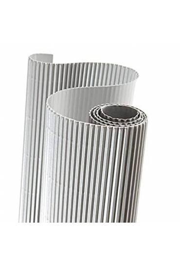 Rollo carton ondulado Canson 50x70 plata
